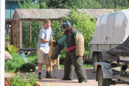 Немецкая овчарка, Спарта