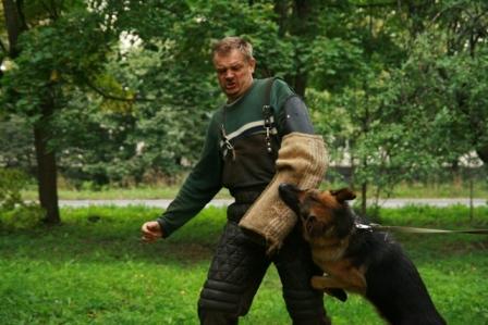 Немецкая овчарка, Белла