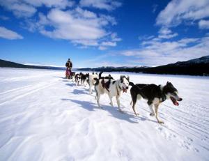 8 мифов о зиме
