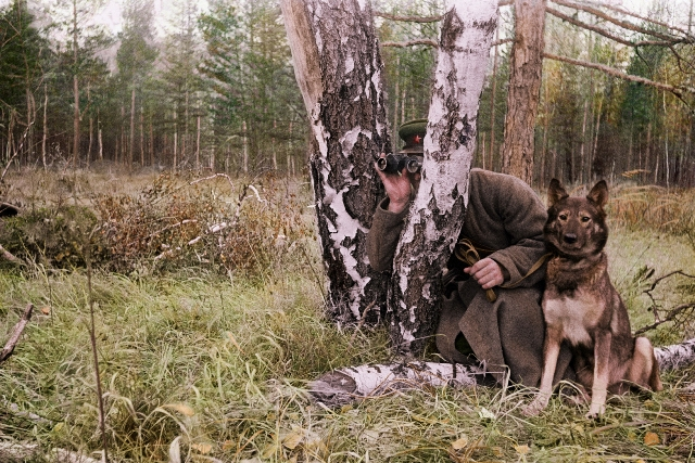 Соревнования посвященные дню образования пограничной кинологии Российской Федерации