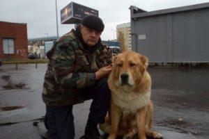 Собака и её хозяин