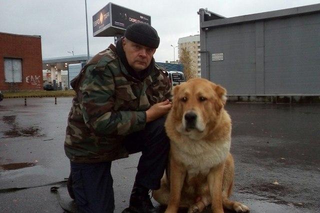 Собака и её хозяин очень похожи