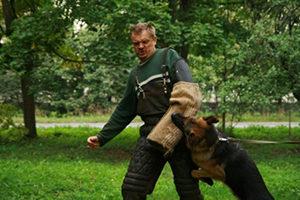 Работа собаки с перехватыванием